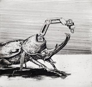 Brosa, Coleoptera-7, Radierung, 16,9 x 17,8cm